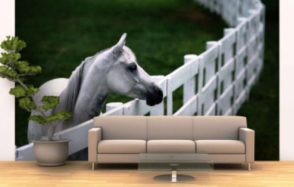 3d обои лошадь в интерьере гостиной
