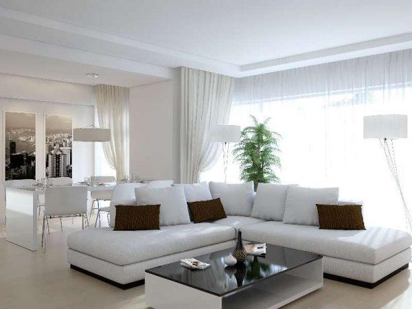 комнатные растение в интерьер белой гостиной