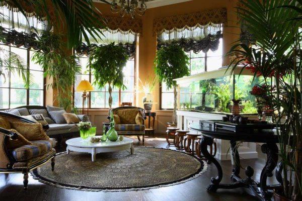 зимний сад в эркере гостиной