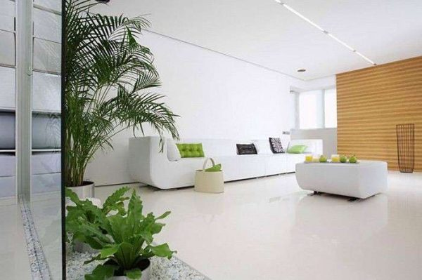 цветы в гостиной в стиле минимализм