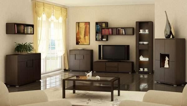 коричневая корпусная мебель в интерьере современной гостиной
