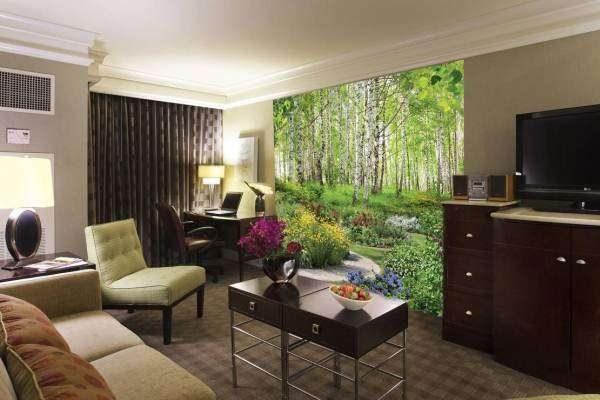 фотообои в гостиной с природой