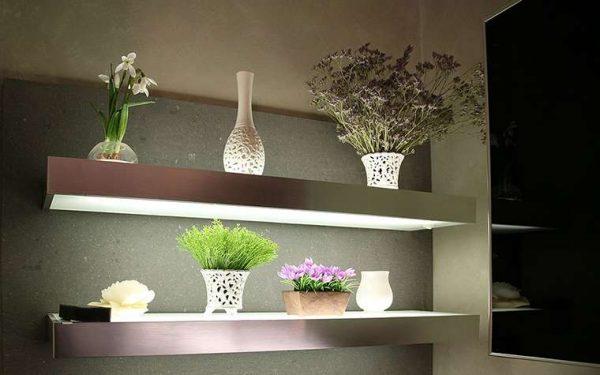 растения в прихожей в квартире