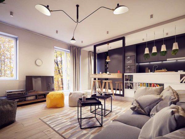 просторная кухня-гостиная в эко стиле