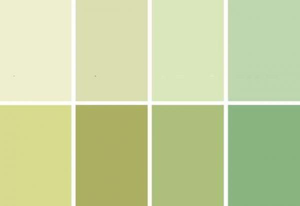 оливковые цвета