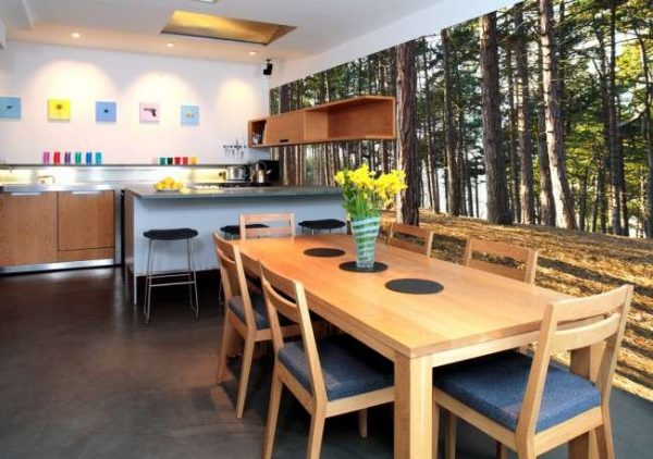 фотообои с лесом в интерьере кухни