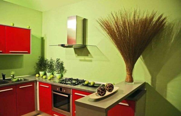 зелёно красная кухня