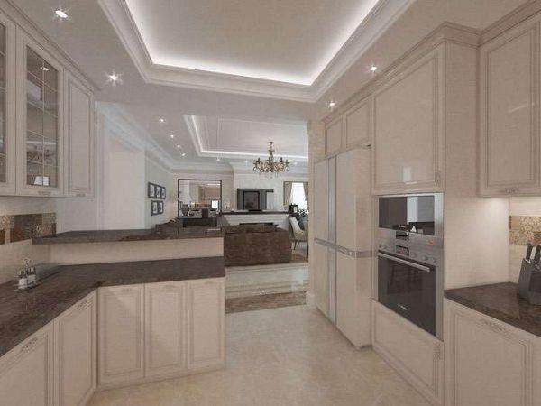 кухня студия в частном доме