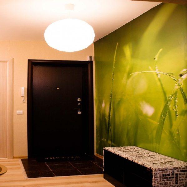 зелёные фотообои с травой в коридоре