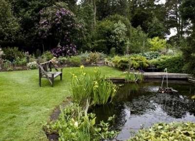 Создано природой: пейзажный стиль в ландшафтном дизайне и его особенности