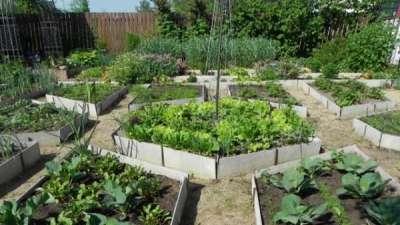 из чего сделать грядки на огороде