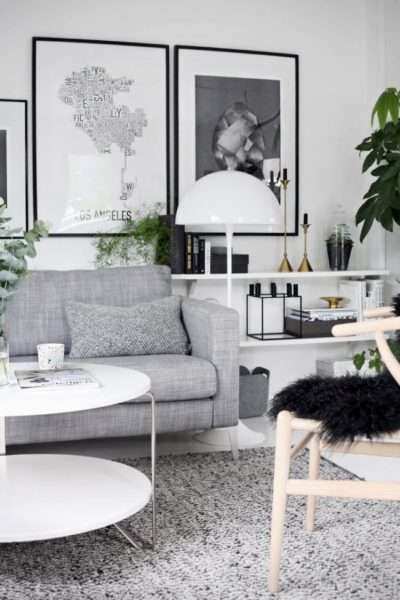 комнатные цветы в черно-белой гостиной
