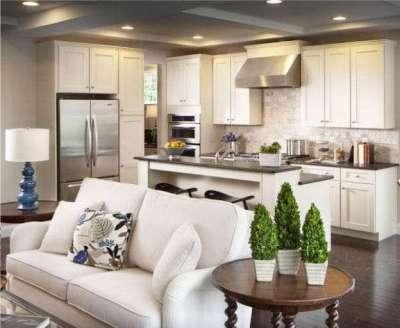 Гостиная совмещенная с кухней с белой мебелью