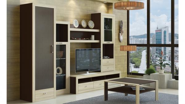 стильная и современная корпусная мебель в интерьере гостиной