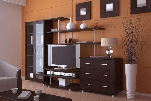 мебель с телевизором в интерьере гостиной эконом класса