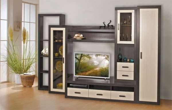 Стенка в гостиную в современном стиле со шкафом для одежды