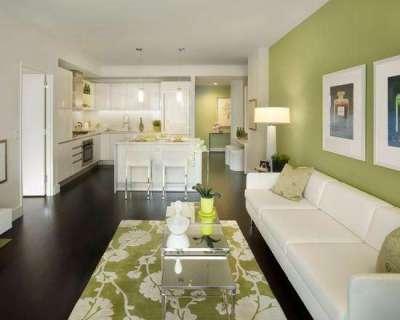 зонирование кухни гостиной 20 кв.м. с помощью цвета стены
