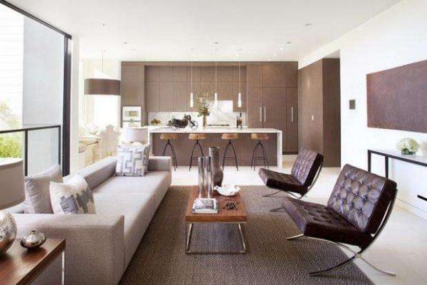 в интерьере кухни-гостиной 20 кв.м. зонирование мебелью