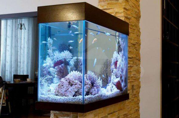 совмещённая гостиная со спальней с аквариумом