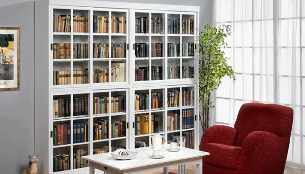 стильный шкаф с библиотекой в гостиной в современном стиле