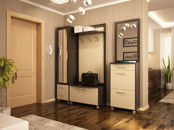 корпусная мебель в интерьере прихожей в квартире