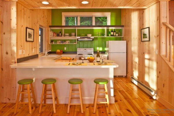 кухня студия с яркими стенами