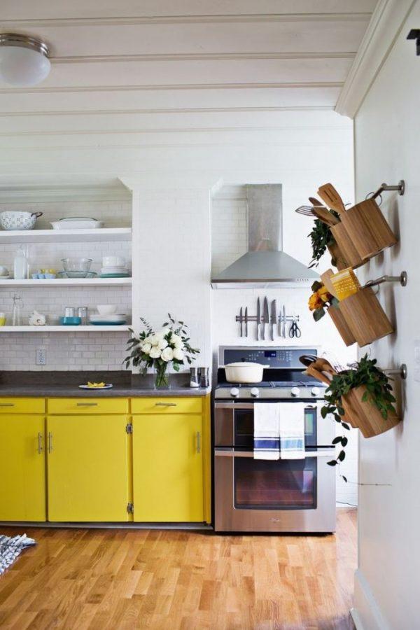 горшки с цветами в интерьере современной кухни