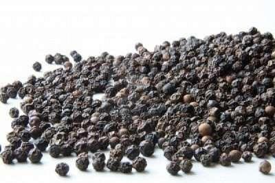Перец черный горошек выращивание в россии 49