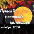 e6b76950019aed665e649e1b4ad09516